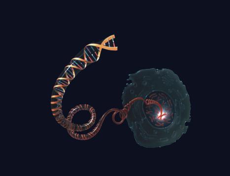 Bionimbus 'cuelga' la mayor base de datos sobre el cáncer en la nube.-   Datos   Scoop.it