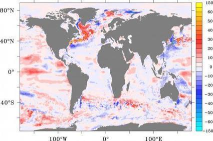 New study explains the role of oceans in global 'warming hiatus' | Sustain Our Earth | Scoop.it