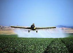 Hallan vínculo entre DDT (pesticida) y riesgo de Alzheimer | Novedades Adiecs! | Scoop.it