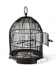 Get Stylish Stainless Steel Bird Cages made of Mesh wire in Melbourne | Home Improvement | Scoop.it