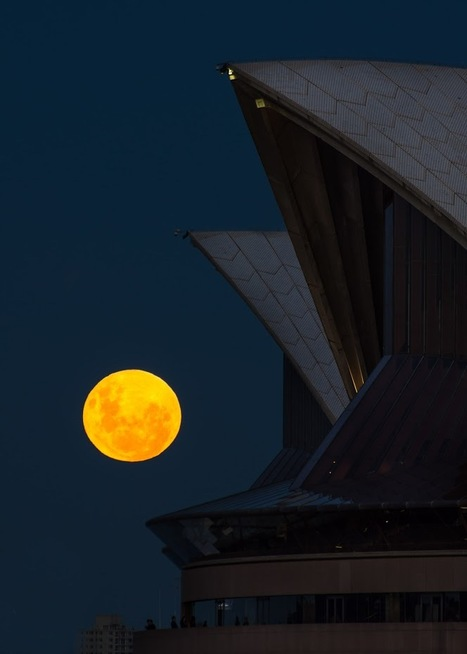 Photos: Largest and brightest full moon of year | Biosciencia News | Scoop.it