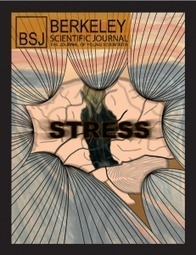 Science of Stress | The Student Blog | Social Neuroscience Advances | Scoop.it