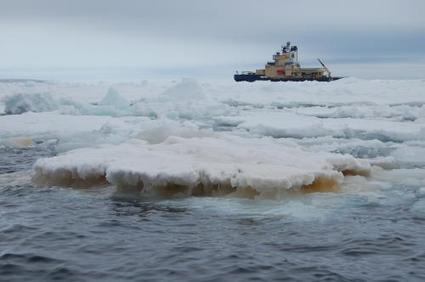Moving iron in Antarctica: New study on carbon dioxide absorption in Antarctic seas   Sustain Our Earth   Scoop.it