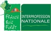 La commission palette bois de la FNB intègre l'Institut de l'économie circulaire | Approvisionnement et Première Transformation | Scoop.it