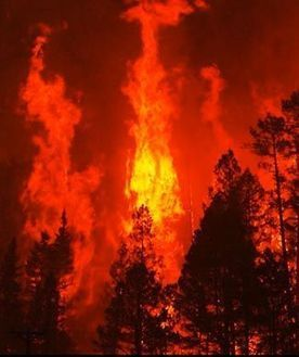 Western Wildfire Part of New Climate Reality: Scientist | Earthweek | CALS in the News | Scoop.it