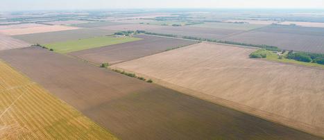 Corn Belt farmland price retreat longest since 1980s   Grain du Coteau : News ( corn maize ethanol DDG soybean soymeal wheat livestock beef pigs canadian dollar)   Scoop.it