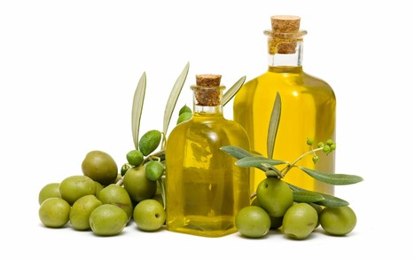 Effects of using subsurface drip irrigation and treated municipal wastewater on olive (Olea. europaea L.)   International Journal of Agronomy and Agricultural Research (IJAAR)   Scoop.it