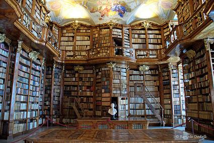 Het wordt nu echt tijd voor 1 digitale referentiebibliotheek | Vakblog – werken met informatie | De Informatieprofessional | Scoop.it