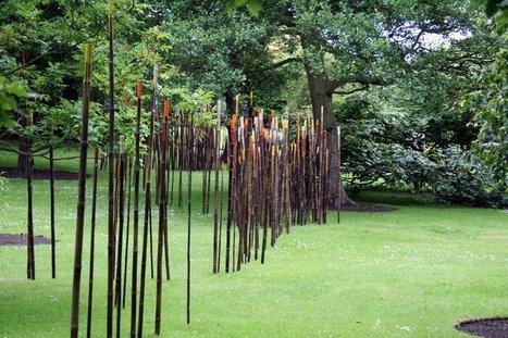 Wind and bamboos | DESARTSONNANTS - CRÉATION SONORE ET ENVIRONNEMENT - ENVIRONMENTAL SOUND ART - PAYSAGES ET ECOLOGIE SONORE | Scoop.it