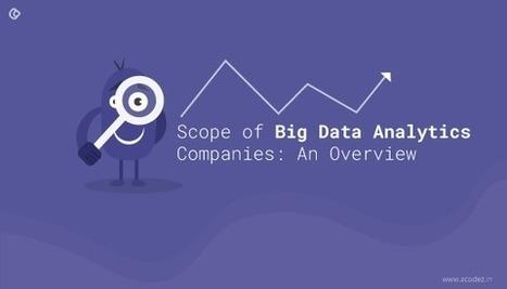 Scope of Big Data Analytics Companies: An Overview | Web Design | Scoop.it