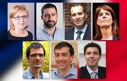 Législatives partielles sur la 3e circonscription de Haute-Garonne, 7 candidats, 3 semaines de campagne | Toulouse La Ville Rose | Scoop.it