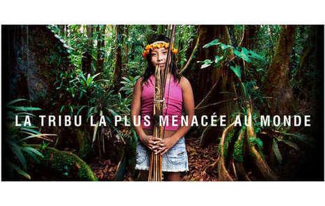 Une campagne victorieuse sauve la tribu la plus menacée de la Terre | Survival International | Kiosque du monde : Amériques | Scoop.it