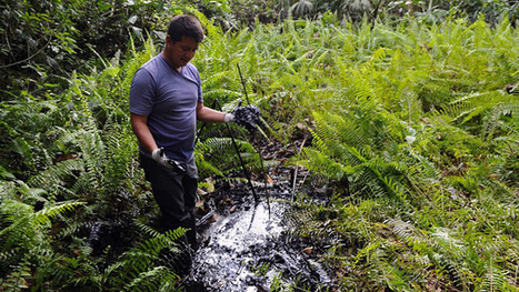 Dirty dealings: Chevron's toxic pollution fine reduced to $9.5bn | Sustain Our Earth | Scoop.it