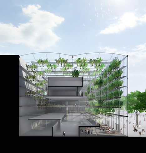 Urban Vertical Plantation | plant and design | Scoop.it