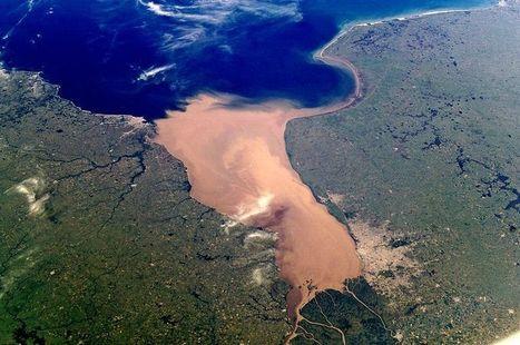 Las matemáticas explican por qué los ríos forman afluentes | l | Scoop.it