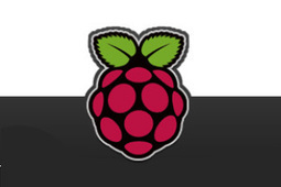 'Raspberry Pi Zero' sells out in first day of availability - Game Politics   Raspberry Pi   Scoop.it