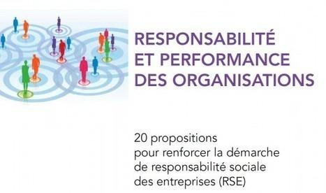 Rapport Brovelli, Drago et Molinié sur la Responsabilité sociale et ...   Responsabilité Sociétale des Entreprises   Scoop.it