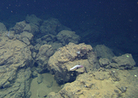 Weird Underwater Volcano Discovered Near Baja | Scuba Diving Adventures | Scoop.it