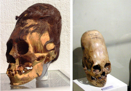 Are Paracas Elongated Skulls a New Species, Aliens or a Hoax? | NEW LIFE | Scoop.it
