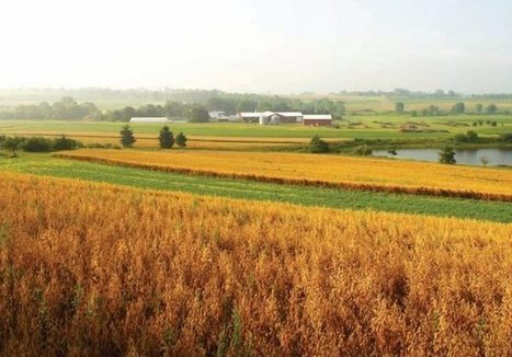 Group to develop sustainable farming programs - Agri News   Sustainable Food Production   Scoop.it
