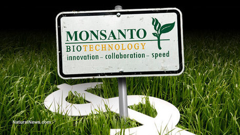 How Monsanto and biotech companies violate the Nuremberg Code with inhumane experiments on humans | GarryRogers NatCon News | Scoop.it
