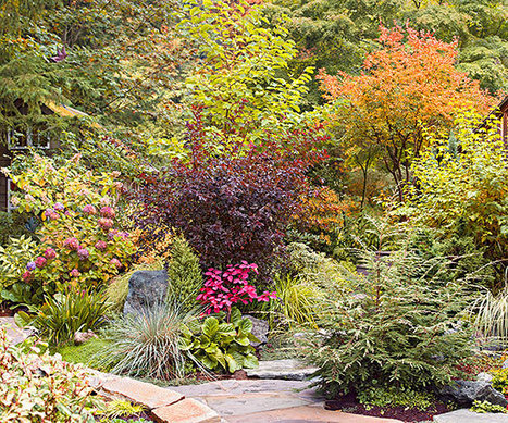 Create a Fall Garden Retreat | Landscape Creative Inspiration | Scoop.it