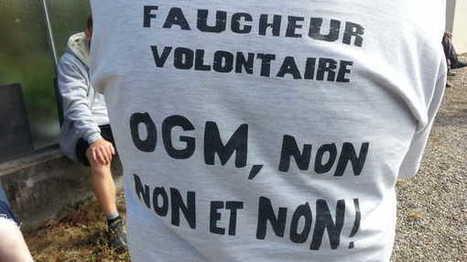 On demande Justice !Et si le droit venait à la rescousse des défenseurs de l' #environnement ? 53 mn France Culture | Infos en français | Scoop.it
