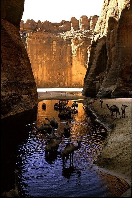 Camel Canyon, Chad | My Photo | Scoop.it