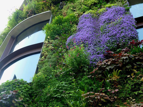 bbonthebrink: The Living Wall at Quai Branly | Wellington Aquaponics | Scoop.it