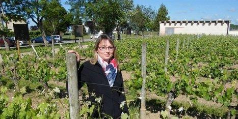 Montagne (33) : Emeline Citerne s'illustre au Salon de l'agriculture   Agriculture en Gironde   Scoop.it