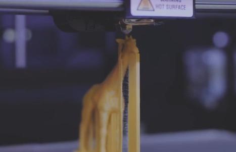 Yahoo ! relie son moteur de recherche à une imprimante 3D pour les enfants malvoyants     Wonderful Brands   Prospection technologiques   Scoop.it