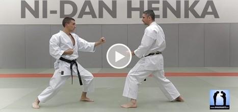 Ni-dan Henka [vidéo] - Jeudi Karaté | Imagin' Arts Tv | Scoop.it