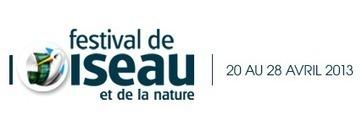 En Picardie : Festival Oiseau Nature   Revue de Web par ClC   Scoop.it