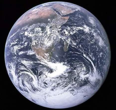 El cambio climático será más dañino para las especies de climas cálidos. | Calentamiento Global | Scoop.it