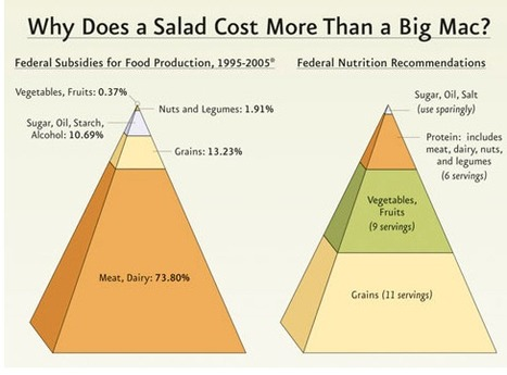 Salad vs. Big Mac | Infographics | Scoop.it