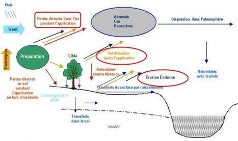 Pollution atmosphérique. Synthèse des connaissances sur le transfert des pesticides vers l'atmosphère par volatilisation depuis les plantes | Alimentation Santé Environnement | Scoop.it