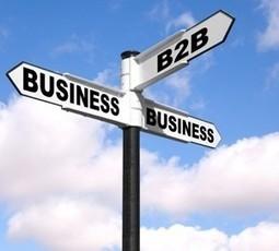 PosicionaWeb.es - Estrategias B2B: La conversión   Curso de Posicionamiento Web 1   Scoop.it