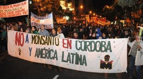 Monsanto Backs Out of Seed Plant in Argentina After Protests | Liberty Revolution | Scoop.it
