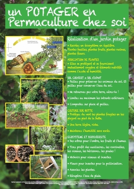 un potager en permaculture | PIC permaculture | Scoop.it