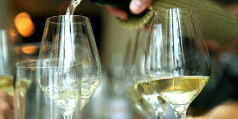 En Wallonie, on produit du vin et il a du succès, de plus en plus ! | Revue de presse agricole de la FUGEA | Scoop.it