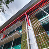 Green Buildings in Singapore