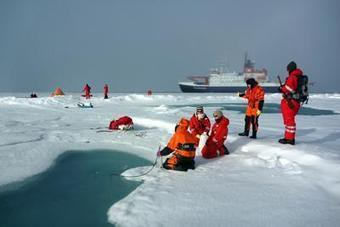 """Seadiscovery.com - Polarstern Returnes from Central Arctic Expedition """"IceArc"""" 