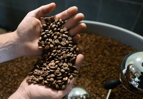 Americans' Coffee Guzzling Is Pushing Bean Prices Higher | Coffee News | Scoop.it