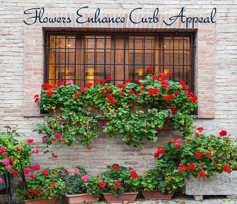 Does Your Home Have Curb Appeal | Real Estate Information | Scoop.it