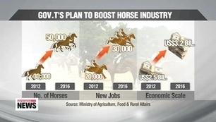 Giddy up! Korea's horse industry in the spotlight - Arirang News   Horse Industry News   Scoop.it