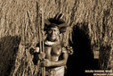 Indigenous tribes say effects of climate change already felt in Amazon rainforest | Food issues | Scoop.it