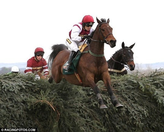 Have scientists found a winning formula? Researchers claim they can predict Grand National winner... and their money is on Seabass