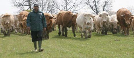 Dal contadino una lezione di umiltà all'animalista | Appunti | Scoop.it
