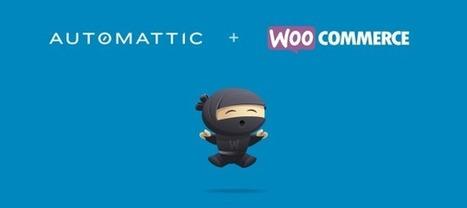 Woo & Automattic | Wordpress hospital | Scoop.it