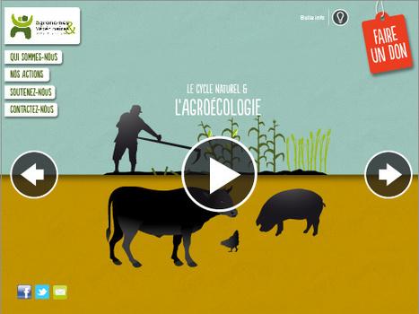 AVSF et l'Agroécologie | Pour une agriculture et une alimentation respectueuses des hommes et de l'environnement | Scoop.it